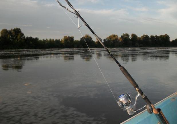 Fotogallery pesca al siluro le tecniche le esche e l attrezzatura